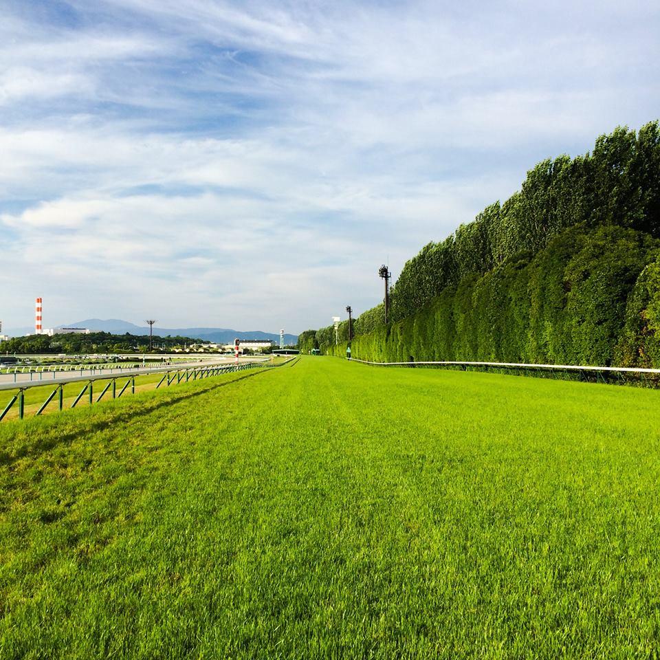 やさぐれ競馬 PART3|Derby Day 2015